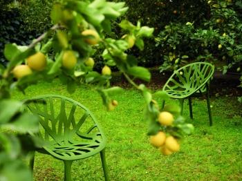 VITRA židle Vegetal