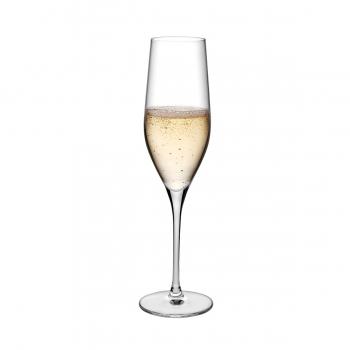 Nude designové sklenice na šampaňské Vinifera
