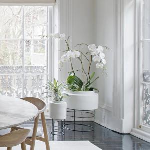 Bolia designové květináče Botanique (průměr 15 cm)