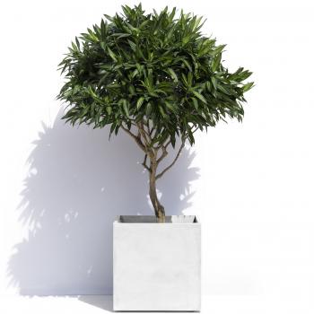 Pots designové květináče Geneva (32  x 32 cm)