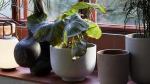 &Tradition designové květináče Collect Planter SC69