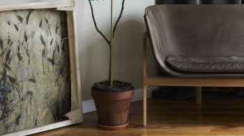 Menu designové sedačky Tailor Sofa