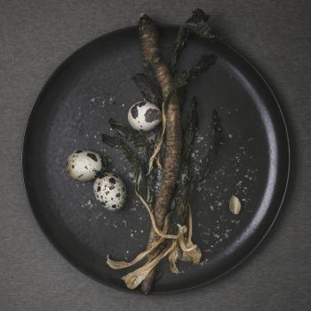 Menu designové talíře New Norm Dinnerware Plate