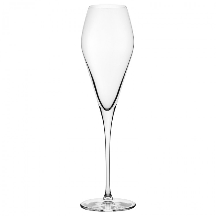 Nude designové sklenice na šampaňské Fantasy