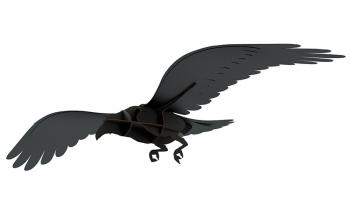 Designové dekorace Ravens - Adam