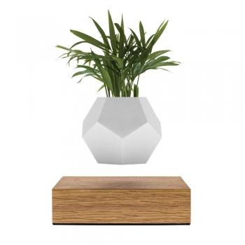 Designové květináče Lyfe